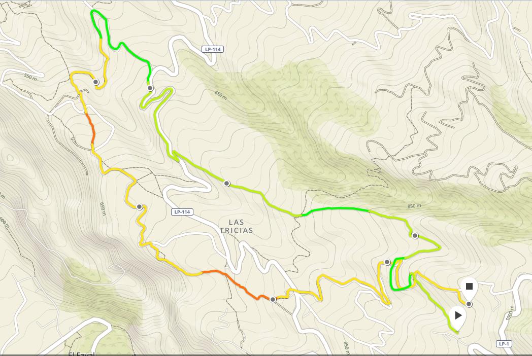 Course Les hauts de Buracas - 48mn 7,7km +422m